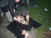 2009-12-27 - A-Wurf, 31. Tag (47)
